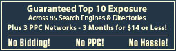 Top 10 Site Site Positioning Across 100's of Search Engines